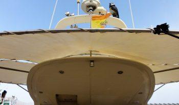 CATAMARAN FLASH CAT 43 FLY lleno