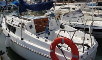 velero neptun 22
